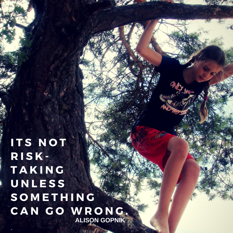 Its not risk-taking unless something can go wrong. - Alison Gopnik